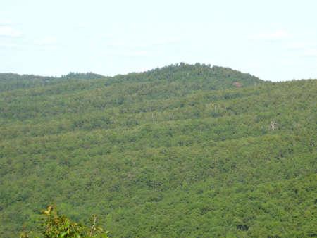 緑豊かな丘。 写真素材 - 5875629