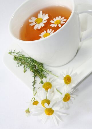 kamille: Chamomile tea with chamomile flower