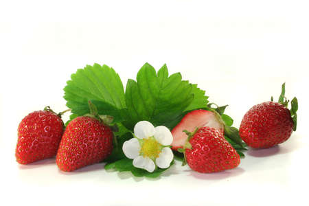 fresh strawberries with leaves and blossom on a white background Stock Photo - 7133642