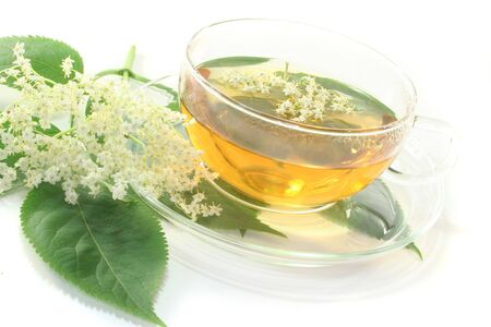 diuretic: a cup of elderflower tea with a sprig of fresh flowers and leafs Stock Photo