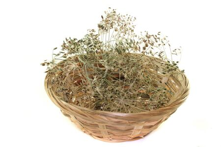 Dill with brown seeds in a basket on a white background Stock Photo - 7485579
