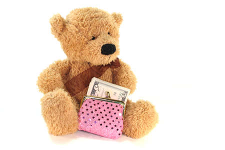 Teddy with purse with lots of dollar bills photo