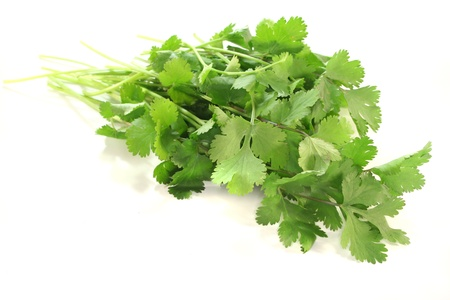 a bunch of fresh Coriander on a white background Stockfoto