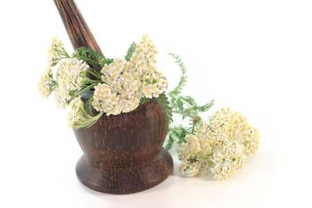 Yarrow in a mortar on white background Stock Photo - 9751830