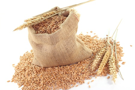 Sacks with Cereals and wheat ears on a white background Standard-Bild