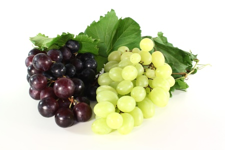 red and bright grapes with vine tendril on a white background