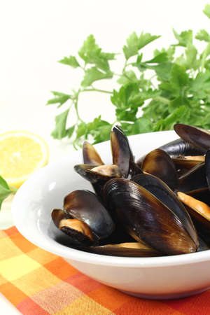 fresh cooked mussels in a bowl with napkin photo