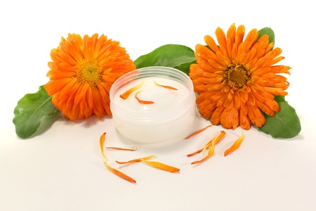 ointment: Calendula ointment with marigold flowers, leaves and petals