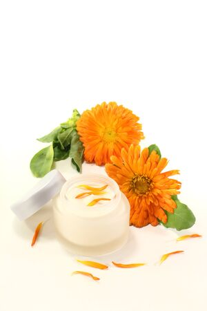 Calendula ointment with marigold flowers, leaves and fresh petals on a light background Stock Photo - 13159134