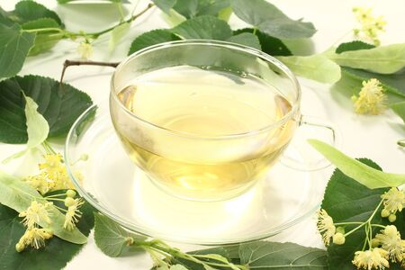 linden blossom: fresh linden blossom tea with linden flowers and leaves Stock Photo