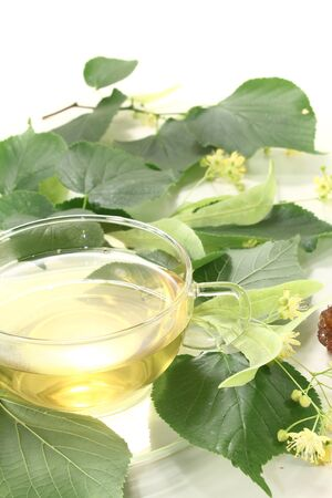 linden blossom: fresh linden blossom tea with linden flowers, leaves and candy Stock Photo