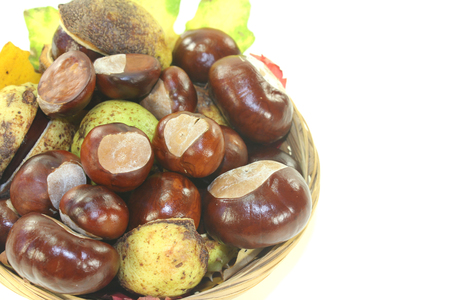 buckeye seed: horse chestnuts in a basket on a light background Stock Photo