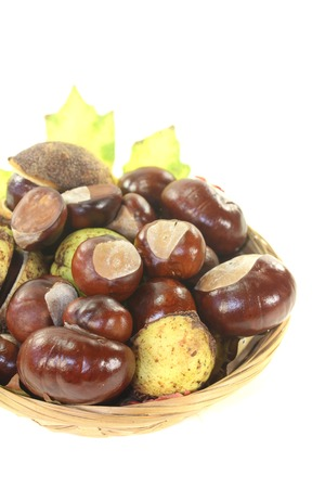 buckeye tree: brown horse chestnuts in a basket on a bright background Stock Photo