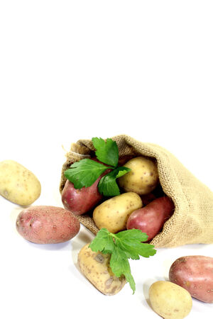 viands: yellow and red potatoes in the bag on bright background