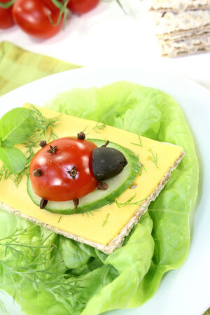 god's cow: Crispbread with cheese, dill and ladybug on a light background