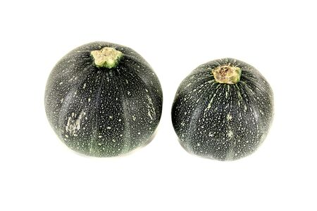 rotund: fresh raw rotund zucchini on a light background