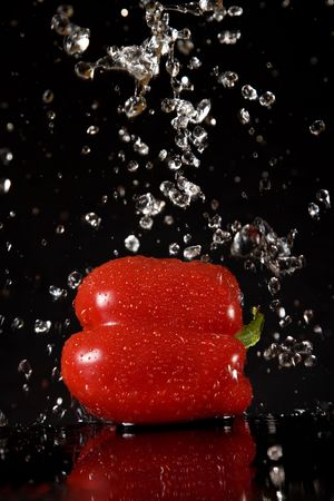 Red pepper with water splashes, isolated on black background  photo