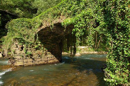 twining: Puente de las Brujas (Bridge of the Witches). Leitzaran Valley, Navarra. Spain