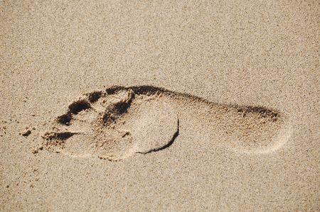 Footprint on sand in beach