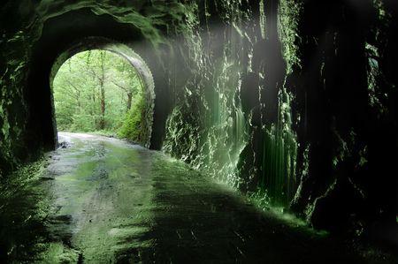 twining: Old tunnel of the Plazaola«s  train. Leitzaran Valley, Navarra. Spain Stock Photo