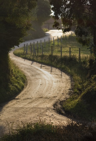 Country Road Winding in Backlight. photo