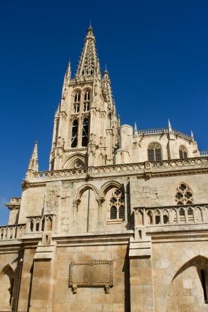cara leon: La cara sur de la catedral g�tica de Burgos, Burgos, Castilla y Le�n. Espa�a