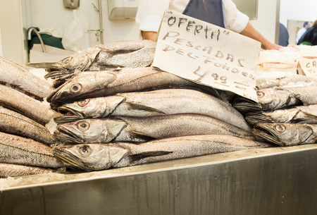 fished: Hakes in a market. (Poster in spanish that says: Offer. Fished in seabed) Stock Photo