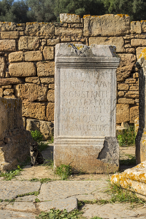 pillage: Remains of carved pedestal stone in archaeological site of the Roman city known as Sala Colonia in Chellah. Chellah is the necropolis of Rabat. Morocco.