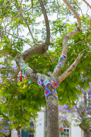 bombing: Yarn bombing.  A tree dressed with knitted colorful wool. European park. Stock Photo