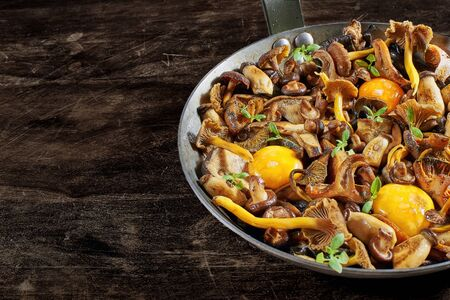 Frying pan steel with mushrooms (Shiitake, Yellow Foot, Boletus of the steppes, Saffron Milkcap and Black chanterelle), soft egg yolks and watercress dressing over a in a rustic wooden table.