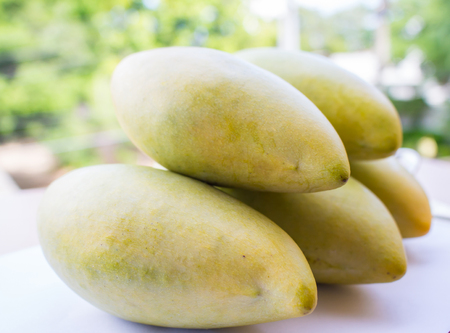 luscious: yellow Mango fruit isolated on green background Stock Photo