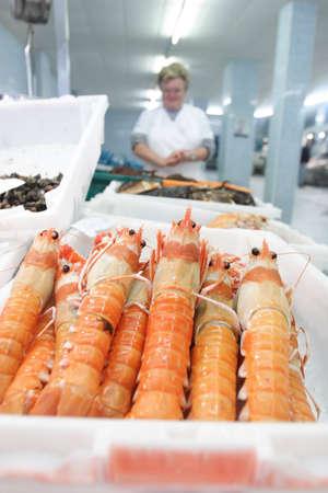 Fish market, fresh shrimp arranged in a plastic box ready for sale Stock Photo - 12616498
