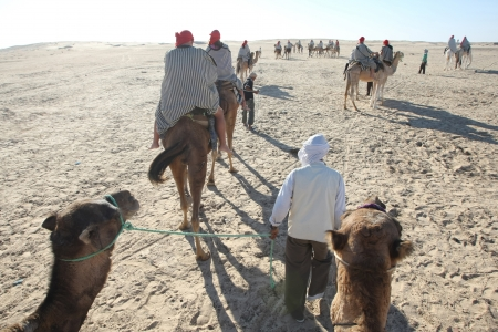Beduins leading tourists on camels at the Sahara desert in Douz, Kebili, Tunisia