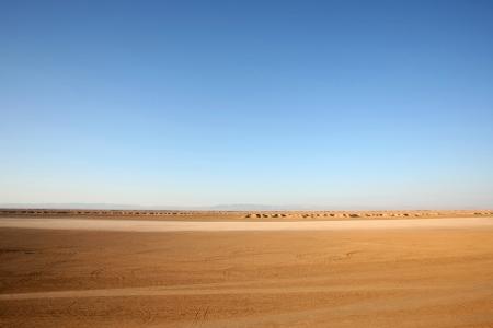 animales del desierto: Roca Pista del camello, una de las paradas tur�sticas en Ong Jemel, Tozeur, T�nez Ong Jemel es el lugar cerca de Tozeur, donde se filmaron las pel�culas Star Wars y el Paciente Ingl�s