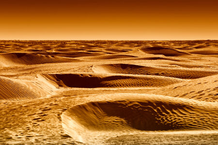 Desert dunes of Sahara at the gateway to the Sahara near the town Douz
