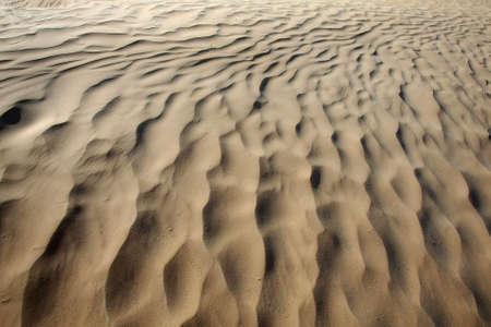 Texture of the sand in the desert of Sahara in Tunisia