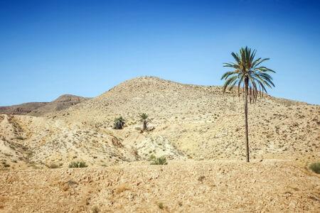 Rocky mountain of Sahara desert in Matmata, Tunisia  photo
