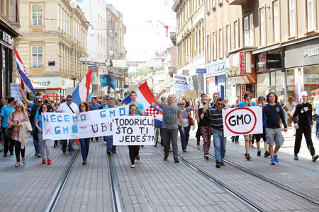 genetically modified organisms: ZAGREB, CROATIA - MAY 21, 2016 :  Protesters march with signs raised through Zagreb in a protest against US biotechnology group Monsanto and against TTIP agreement.