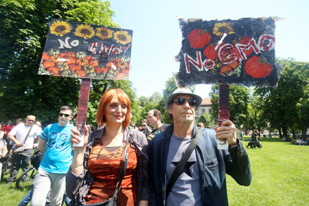 against the current: ZAGREB, CROATIA - MAY 21, 2016 :  Protesters march with signs raised through Zagreb in a protest against US biotechnology group Monsanto and against TTIP agreement.