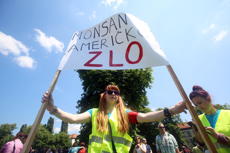 against the current: ZAGREB, CROATIA - MAY 21, 2016 :  Protesters march with signs raised through Zagreb in a protest against US biotechnology group Monsanto and against TTIP agreement. A sign that says Monsanto American evil