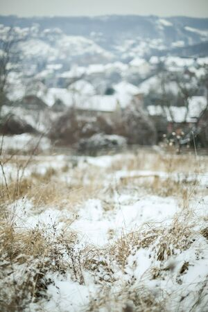 Dry grass covered with snow with village in the background. Stock Photo