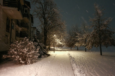 A street covered in snow during snowfall at night. Stock Photo