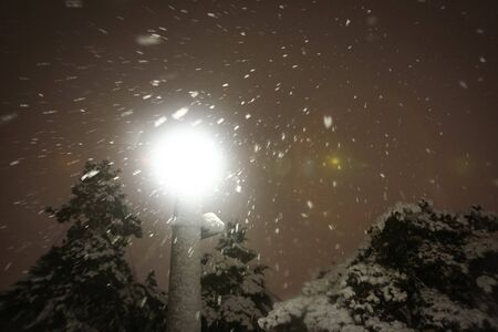 A low angle view of an illuminating street lamp in the park during strong snowfall.