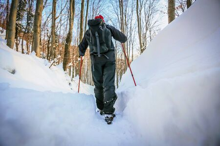 Low angle view of hiker walking on the path with fresh deep snow in the forest on the hill, rear view.