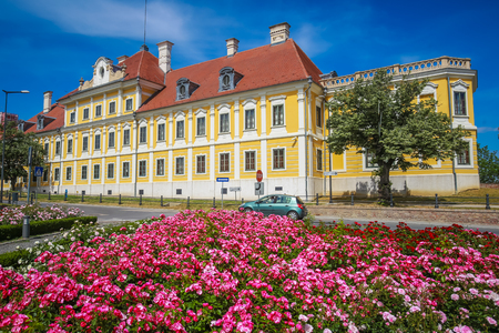 A view of the pink flowers with the City museum located in the Eltz castle in Vukovar, Croatia. Publikacyjne
