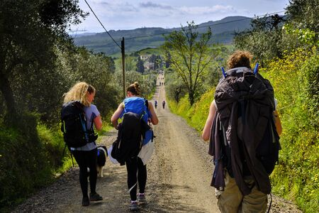 Pilgrims walking on the path to San Gimignano trough woods and yellow bushes. Solo Backpacker Trekking on the Via Francigena from Lucca to Siena. Walking between nature, history, churches, ancient villages.
