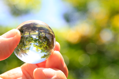 catchphrases: small nature in a glass ball
