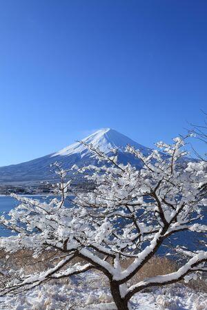 catchphrases: Lake Kawaguchi and its winter scenery
