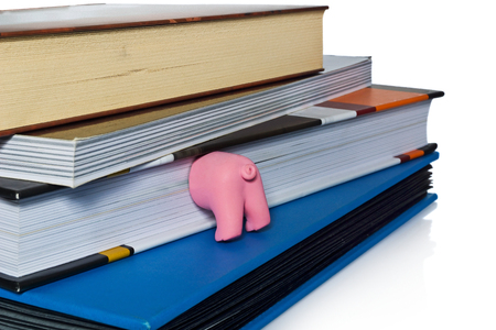Pink ass pig,  half funny pet working as a bookmark. The tab for books and books isolated on white background with light shadow and reflection.