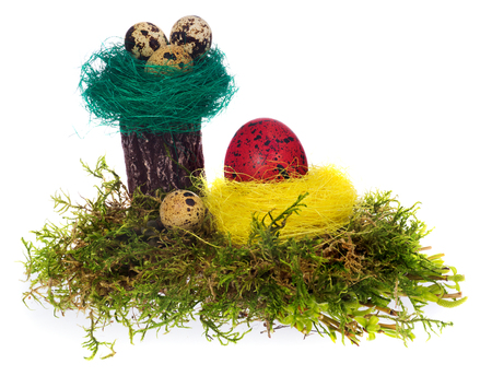 Easter eggs hand painted multicolored in various designs, patterns and colors. Eggs arranged in yellow and green bird nest on forest moss and stump. All Easter composition on a white background with light shadow.
